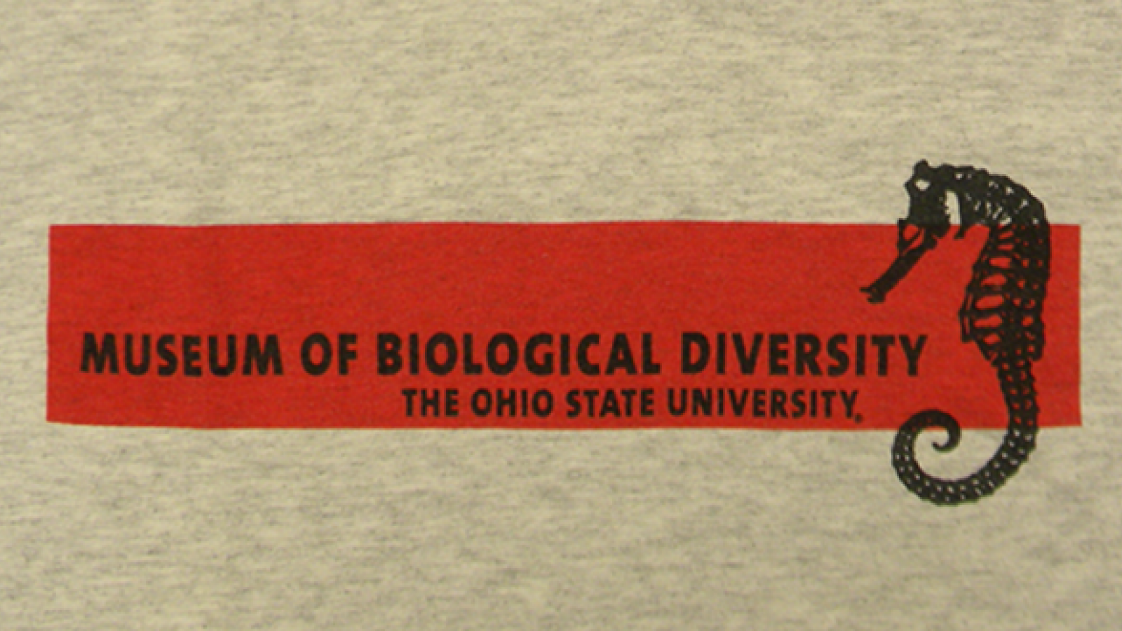 First year of the t-shirt