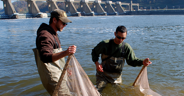 Surveying the diversity of fishes in Ohio rivers